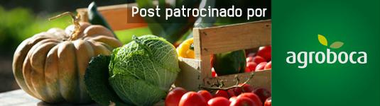 comprar frutas y verduras ecologicas a domicilio
