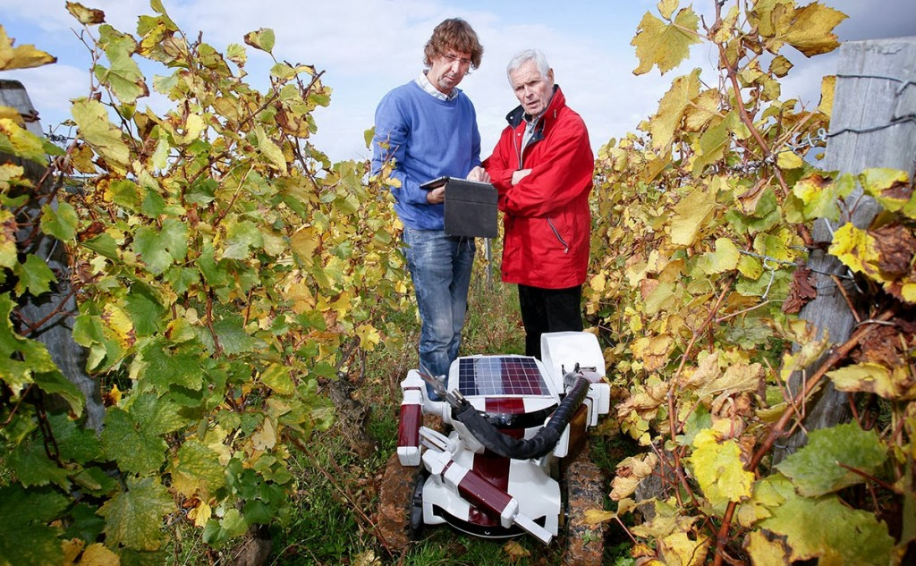 Robótica y viticultura