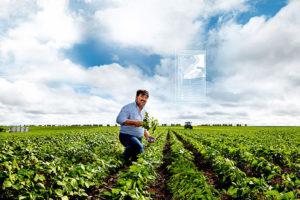 digital farming by bayer cropscience