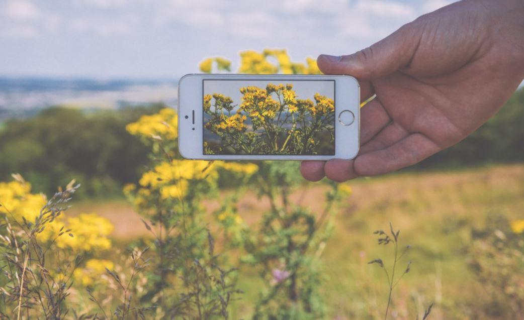 Claves comunicación digital agroalimentaria