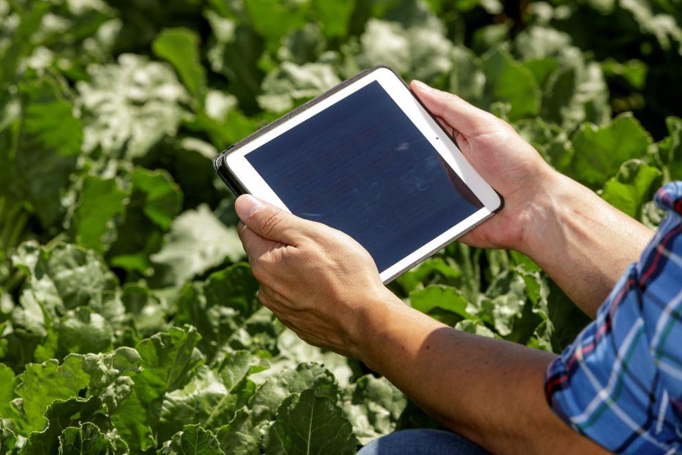 Suez soluciones agrícolas