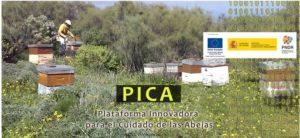 go-pica