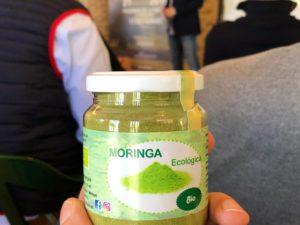 Cultivo de MORINGA en España (Vivero MoringAxarquía).