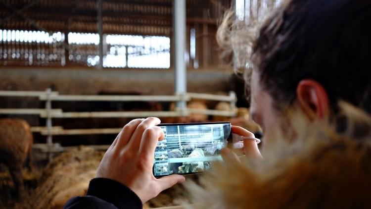Ganadería digital, herramientas y APPs para la granja del siglo XXI