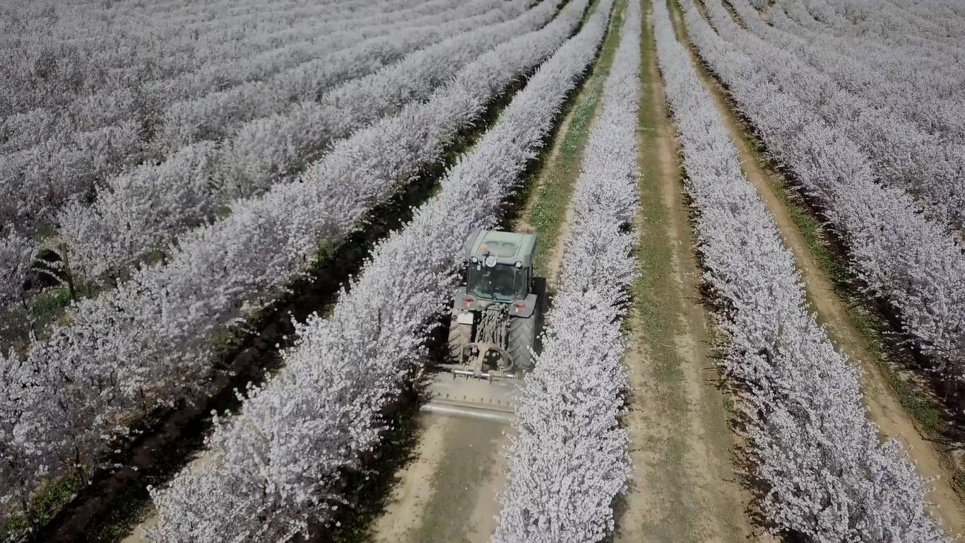 Energías renovables en regadío, una oportunidad para la sostenibilidad de la agricultura